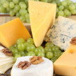 Cheese and grape close-up — Stock Photo