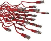 Group of red network cable on white background — Stock Photo