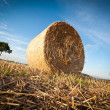 Stock Photo: Hay Bale on the late Afternoon