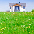 Foto Stock: House in Green