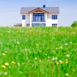 Stock Photo: House in Green