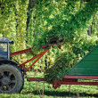 Stock Photo: Truck harvesting Hop