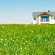 Stock Photo: Meadow and Family House