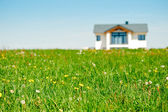 Meadow and Family House — Stockfoto