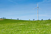 Wind Turbine in Spring Meadow — Stock Photo