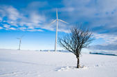 Wind Turbines in Winter Landscape — Stock Photo