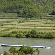 Cargo Ship in the Danube Valley - Stock Photo