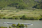 Cargo Ship in the Danube Valley — Stock Photo