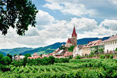Village and Vineyard — Stock Photo
