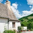 Cottage in the Vineyard — Stockfoto