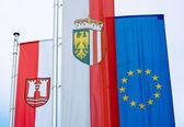 Austrian Flags — Stock Photo