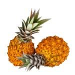 Two fresh juicy pineapples — Stock Photo