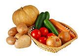 秋季蔬菜混合 — 图库照片