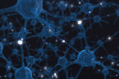 Neurons the Power of the mind — Stock Photo