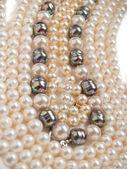 Perlen Halskette Schmuck — Stockfoto