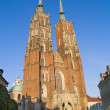 Cathedral, Wroclaw, Poland - Foto Stock