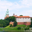 Royal castle at Wawel, Krakow, Poland — Stock Photo #6423816