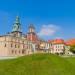 Royal castle at Wawel, Krakow, Poland — Stock Photo #6424071