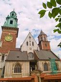 瓦维尔大教堂,克拉科夫,波兰 — 图库照片