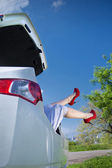 Legs and trunk — Stock Photo
