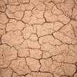 Royalty-Free Stock Photo: Cracked dry ground  texture