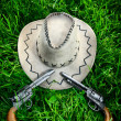 Cowboy hat and two guns — Stock Photo #5661907