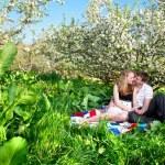 Couple sitting under bloomy tree — Stock Photo