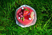 Cake with strawberry on grass — Stock Photo