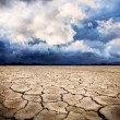 Drought earth — Stock Photo #6088173
