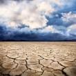 Drought earth — Stock Photo