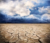Terre de sécheresse — Photo