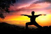 Yoga silhouette virabhadrasana II warrior pose — Stock Photo