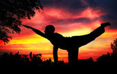 Yoga silhouette parshva marjariasana cat pose — Stock Photo