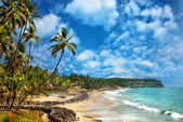 Ocean view in Varkala Kerala India — Stock Photo