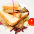 Sandwich on a Plate - Stock Photo
