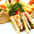 Sandwiches on Plate — Stock Photo #5599987