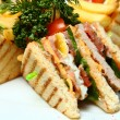 Sandwiches on Plate — Stock Photo #5600005