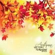Autumn Leaves Falling — Stock Vector #6444163