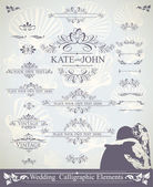 Vintage bruiloft elementen — Stockvector