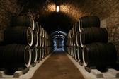 Big wine cellar — Stock Photo
