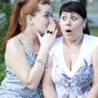 Two girls gossip - Stock Photo