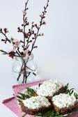 Cheese snack on rye bread, arugula and bouquet of blooming cherry branches — 图库照片