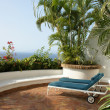 Tropical patio  — Stock Photo