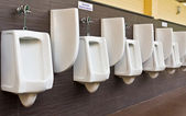 Rangée d'urinoirs en porcelaine blanche — Photo