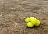 Star Gooseberry On stone — Stock Photo