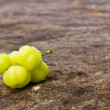 Star Gooseberry — Stock Photo