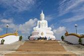 White Buddha statue — Stock Photo