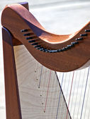 Strings of harp — Stock Photo