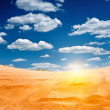 Sandy desert - Stock Photo