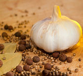 Garlic and spices — Stock Photo